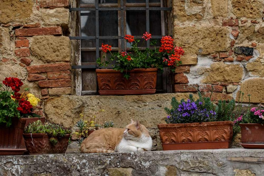 Toscana-Monticchiello6