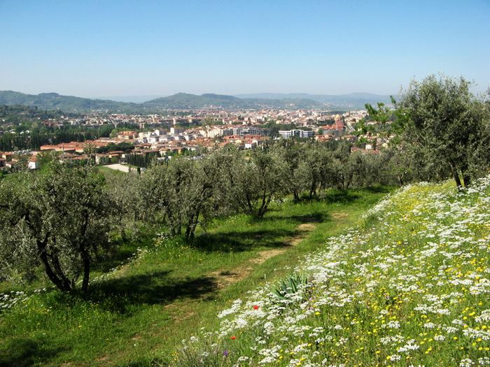Ареццо в Тоскане