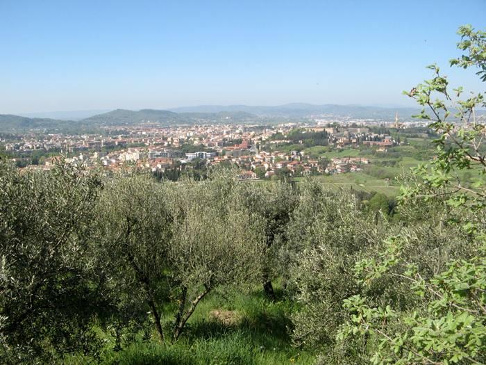 поля рядом с центром Ареццо