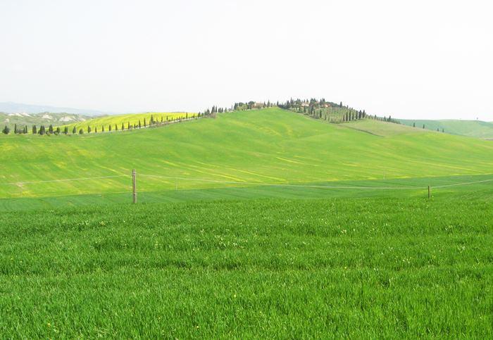 увидеть Тоскану весной впервые в 2018 году