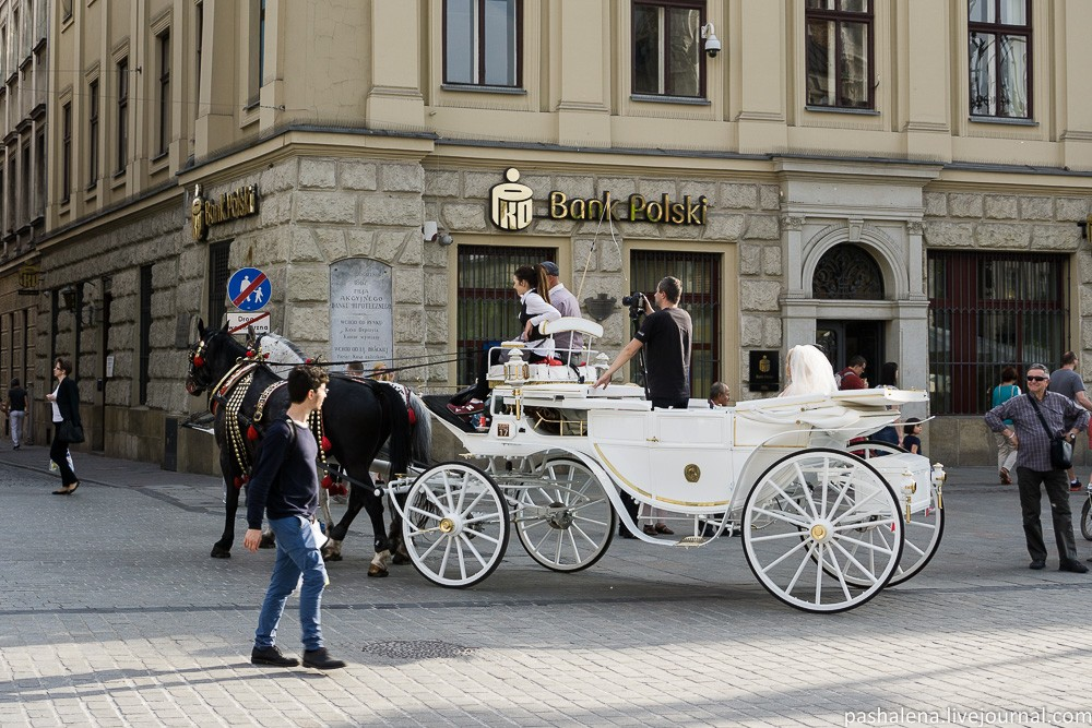 Прогулка на лошадях в Кракове