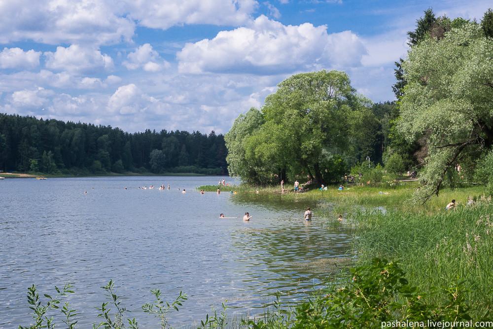 Поросший травой берег в Трусово