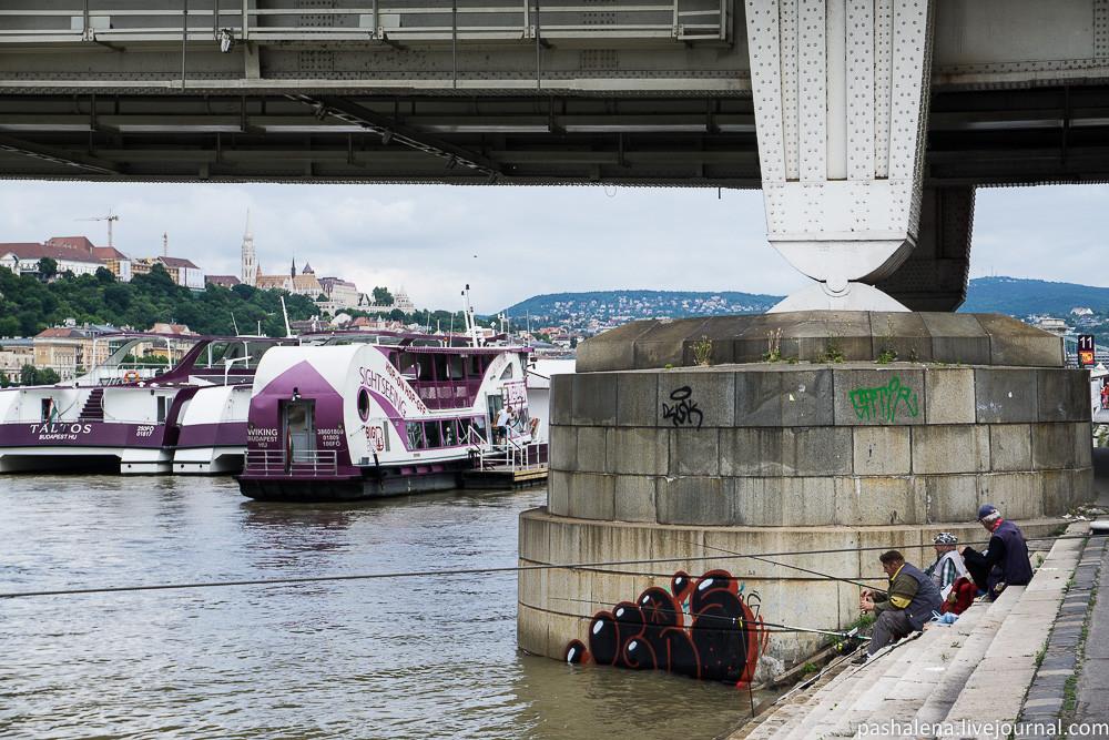 Рыбалка в Будапеште