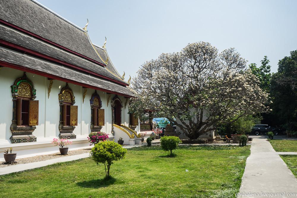 Таиланд Чиангмай