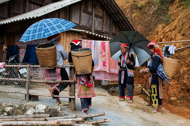 Северный Вьетнам: окрестности Сапы