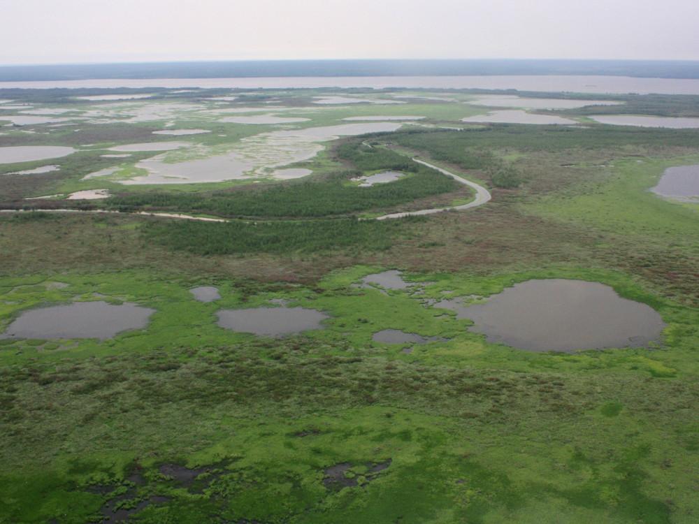 Пролетая над тундрой: вертолётное путешествие в Яр-Сале (18.07.2019) YS29.JPG