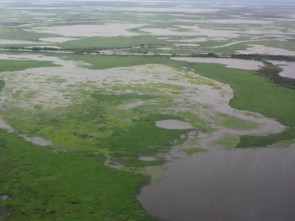 Пролетая над тундрой: вертолётное путешествие в Яр-Сале (18.07.2019) YS40.JPG