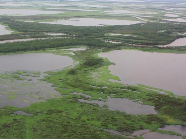 Пролетая над тундрой: вертолётное путешествие в Яр-Сале (18.07.2019) YS42.JPG