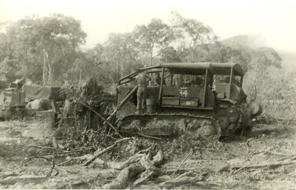 Расчистка джунглей по-научному без дефолиантов