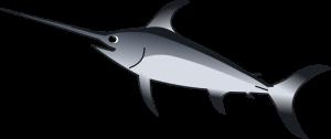 рыбка д`Артаньян
