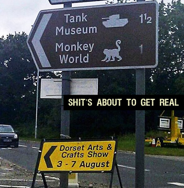 tank-world-monkey-museum-shits-about-to-get-real-funny.jpg