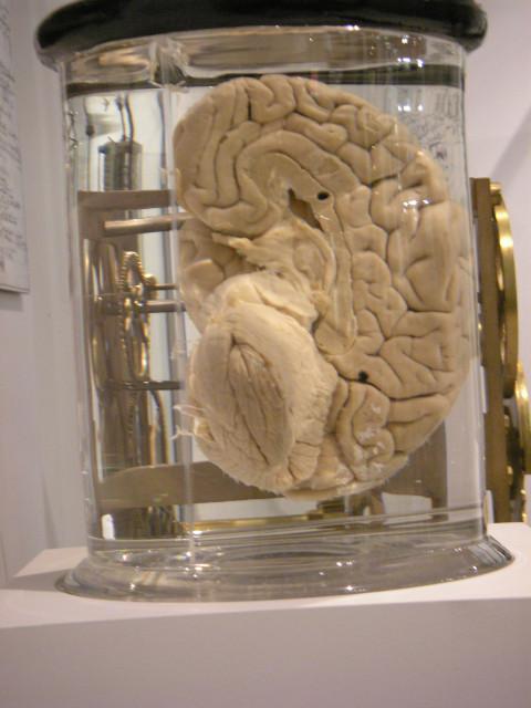 Babbages Brain -  part 1/2