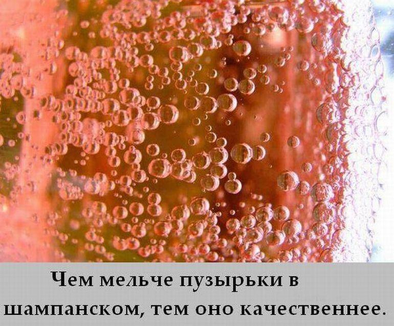 r2_www.catsmob.com_cm_20120704_01183_003_2312c13f