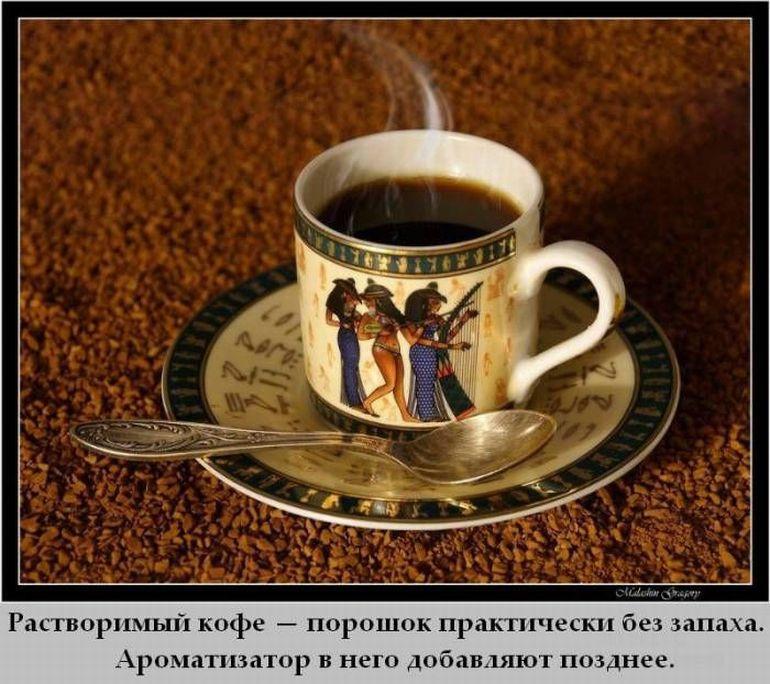 r2_www.catsmob.com_cm_20120704_01183_015_27b8d576