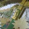 Tanabata Sports July 2012 048