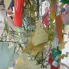 Tanabata Sports July 2012 049