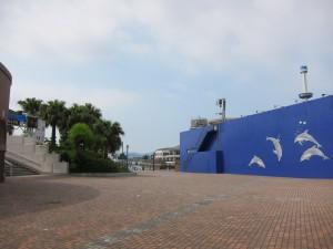 Hakkejima Sea Paradise 2012 Summer School Trip 060