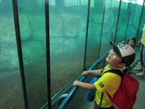 Hakkejima Sea Paradise 2012 Summer School Trip 079