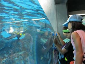 Hakkejima Sea Paradise 2012 Summer School Trip 101