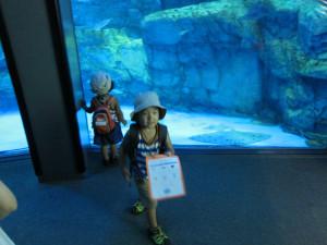 Hakkejima Sea Paradise 2012 Summer School Trip 104