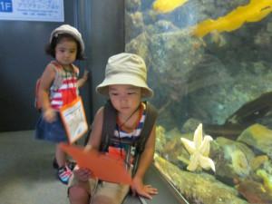 Hakkejima Sea Paradise 2012 Summer School Trip 122