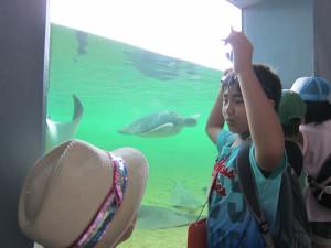 Hakkejima Sea Paradise 2012 Summer School Trip 153