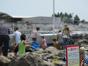 Hakkejima Sea Paradise 2012 Summer School Trip 231