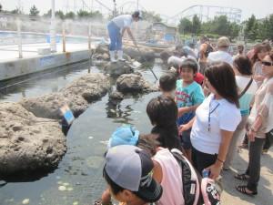 Hakkejima Sea Paradise 2012 Summer School Trip 236