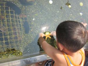 Hakkejima Sea Paradise 2012 Summer School Trip 240