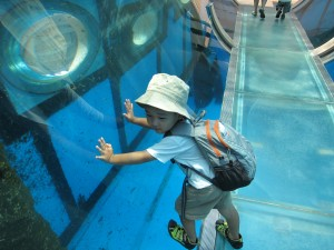Hakkejima Sea Paradise 2012 Summer School Trip 250