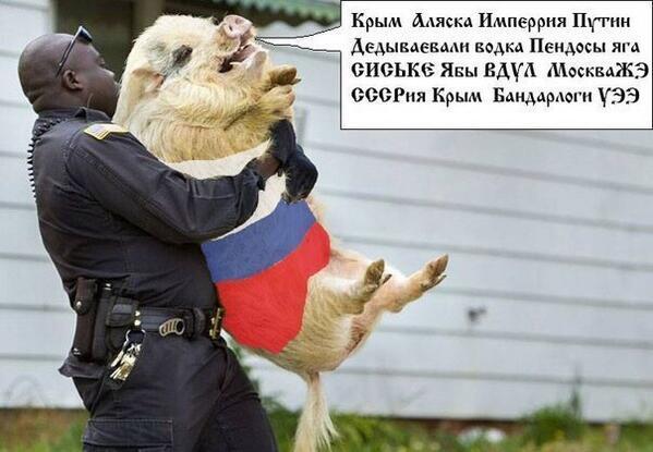 За последнюю неделю в соцсетях закрылось до 60% укроненавистнических аккаунтов, - Геращенко - Цензор.НЕТ 6505