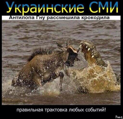 Новости Украины: охота на российских журналистов началась. 267335_900