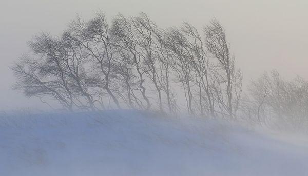 Последний снег зимы