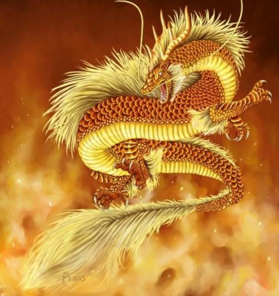 Огненный дракон 1