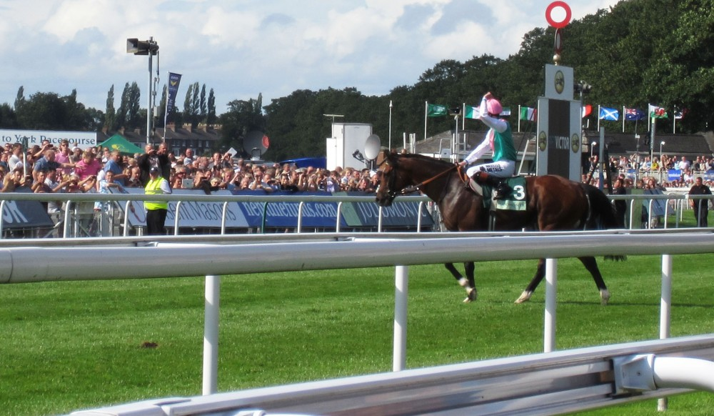 Frankel after the race