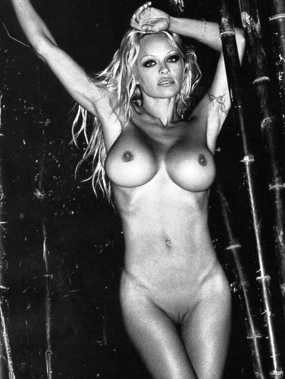 Памела андерсон голышом фото