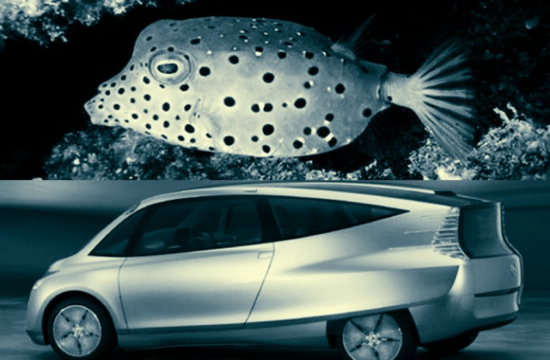 Бионический автомобиль компании Mercedes-Benz (Bionic car) дебют: июнь 2005 года в Вашингтоне на симпозеуме DaimlerChrysler Innovation Symposium