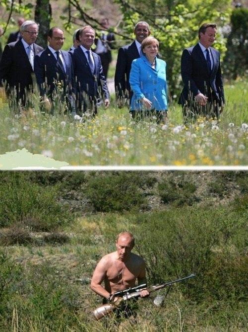 Волк и G7