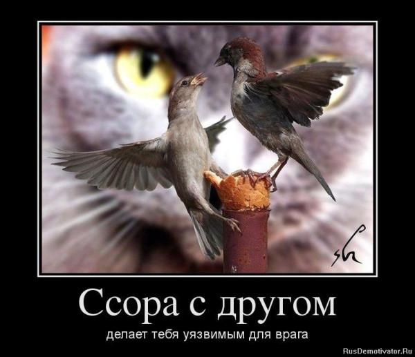 1338810809_30296649_konflikt.jpg