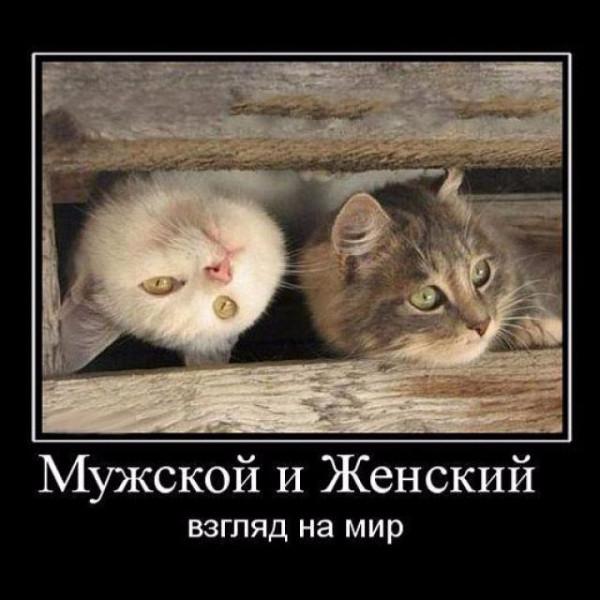 Итория о том, как москвич пришёл в храм.