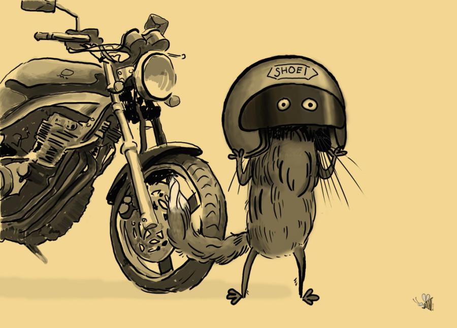 кот и мот1