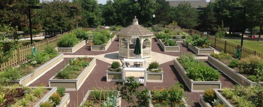 Resident_Garden