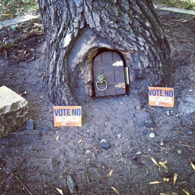 The Lake Harriet elf votes 'No.'