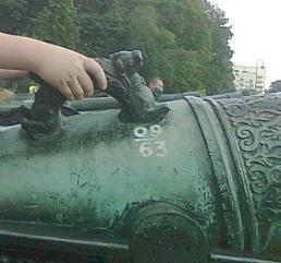 Снимок рука в ушке