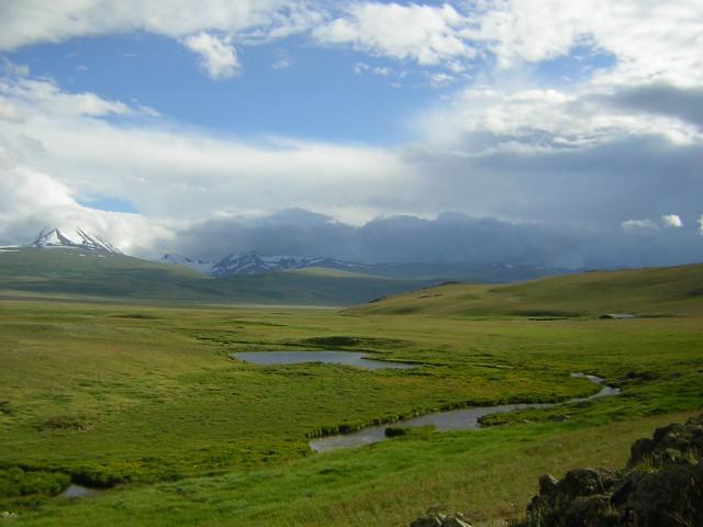 Ukok Plateau (credit J. Castner)
