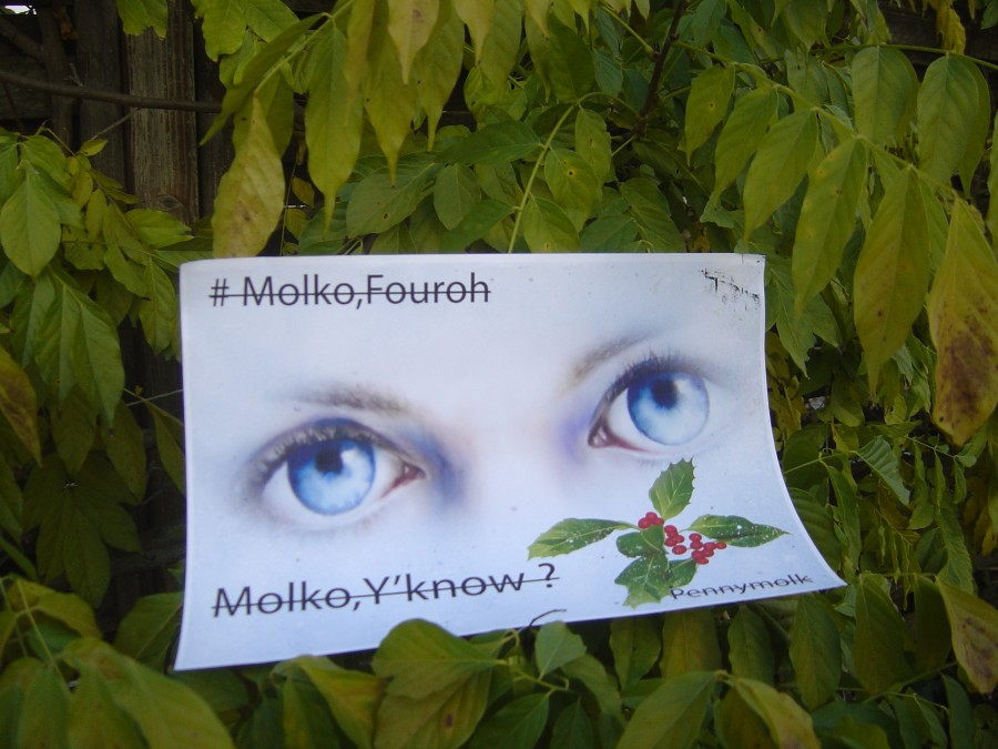 MolkoY'Know outdoors 025