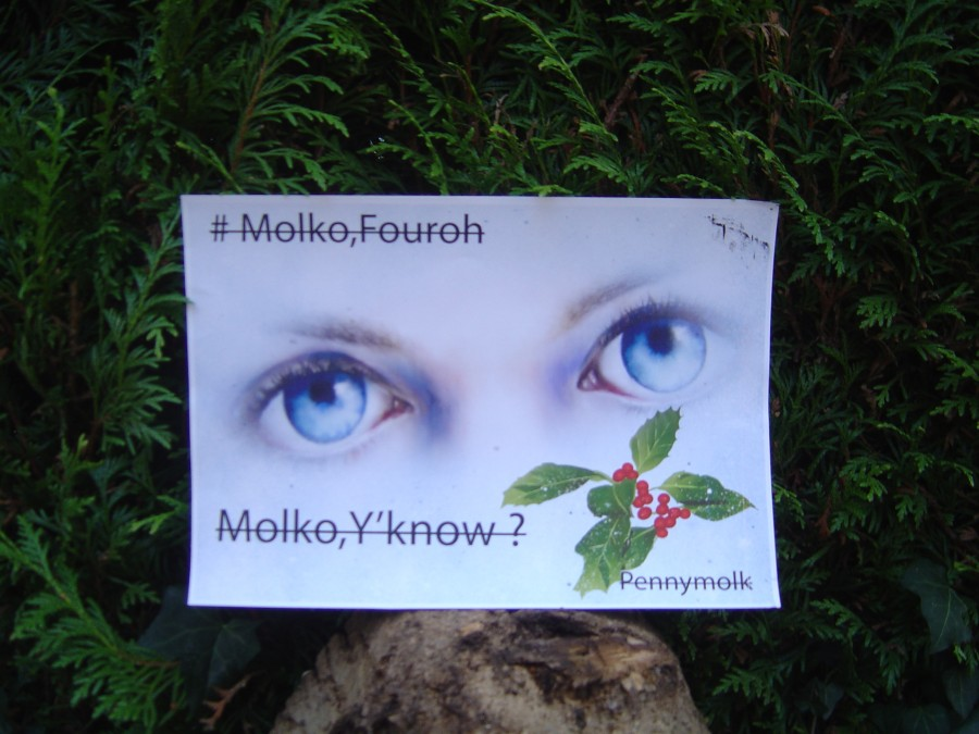 MolkoY'Know outdoors 001