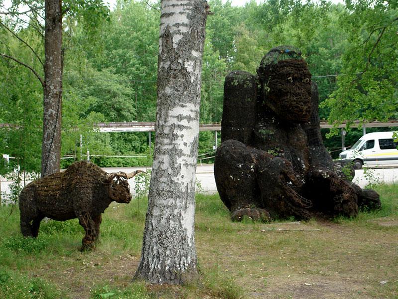 Сестрорецкий Разлив, Кинг-Конг и буйвол