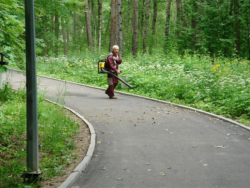 Сестрорецкий Разлив, преданный коммунист сдувает пылинки с верного пути