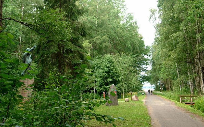 Сестрорецкий Разлив, дорога от шалаша к озеру
